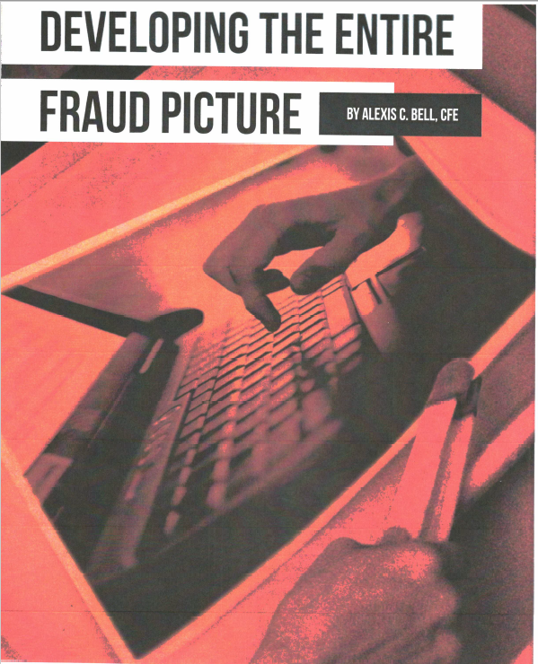 Developing the entire fraud picture (photo)
